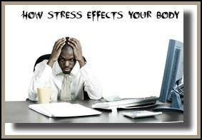 The Physical Effects of Stress  and How Our Bodies React