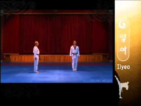 9th Degree Black Belt. Grand Master Kyu Hyung Lee - WTF Poomsae Ilyeo -