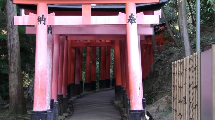 Video dal Fushimi Inari-Taisha  Salita e discesa al Santuario Fushimi Inari Taisha, sotto 4 chilometri di torii rossi vermiglio fino alla cima del monte dove poter godere di una fantastica vista su