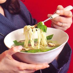Nigella Lawson: noedelsoep - recept - okoko recepten