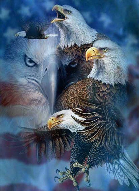 10 Hidden Eagles Illusion - http://www.moillusions.com/10-hidden-eagles-illusion/