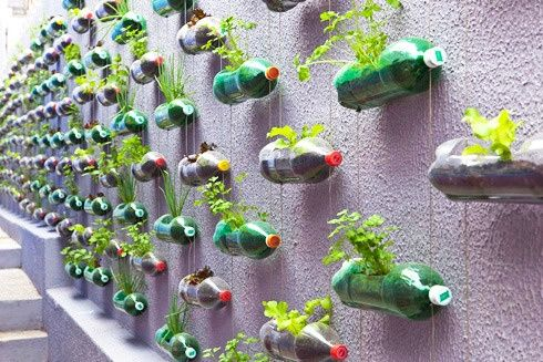 This is a hanging vertical garden with soda bottle planters designed by studio Rosenbaum for a low income household in Brazil. Perfect if you have sunny walls, but not a lot of ground. The bottles are suspended from strings. Clever upcycling. eco-design