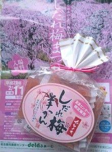 【愛知県の梅の名所】「しだれ梅羊かん」 名古屋市農業センター