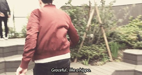 A Day in the Life of Dan and Phil in JAPAN! <--- I didn't know I needed this gif in my life.