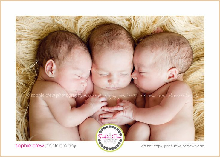 newborn triplet twin multiple babies photography in home travelling studio best san diego family photographer photography for baby beach materntiy
