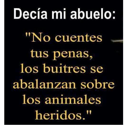 ...SABIAS PALABRAS DE HOMBRES LLENOS DE CONOCIMIENTOS,  Y EXPERIENCIAS CÓMO LAS DE MIS QUERIDOS ABUELOS QUÉ DIOS LES TENGA EN SU SANTA GLORIA, MUCHAS FELICIDADES A QUIENES AÚN CUENTAN CON ELL@S DISFRÚTENLOS AL MÁXIMO AL VISITARLOS  Y  ESCUCHARLES PRESTÁNDOLES TOTAL ATENCIÓN, YÁ QUE ASÍ CÓMO TUS PADRES  TIENEN UN ENORME RECORRIO  POR DELANTE QUE A TI  TE PODARIA AYUDAR EN EL CAMINO QUE ESTAS  RECORRIENDO...❤️MIGUEL ÁNGEL GARCÍA. Mi