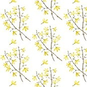 Mudroom?