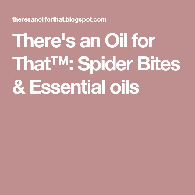 There's an Oil for That™: Spider Bites & Essential oils