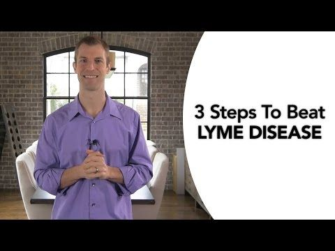 the treatment and prevention of lyme disease Lyme disease accounts for about 80 percent of the tick-borne illnesses in the us another factor that can contribute to the underreporting of cases is a lack of effective surveillance and tracking.
