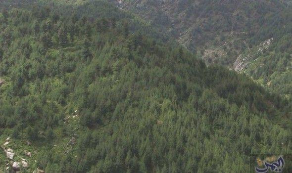مشروع Natural Landmarks Nature Landmarks