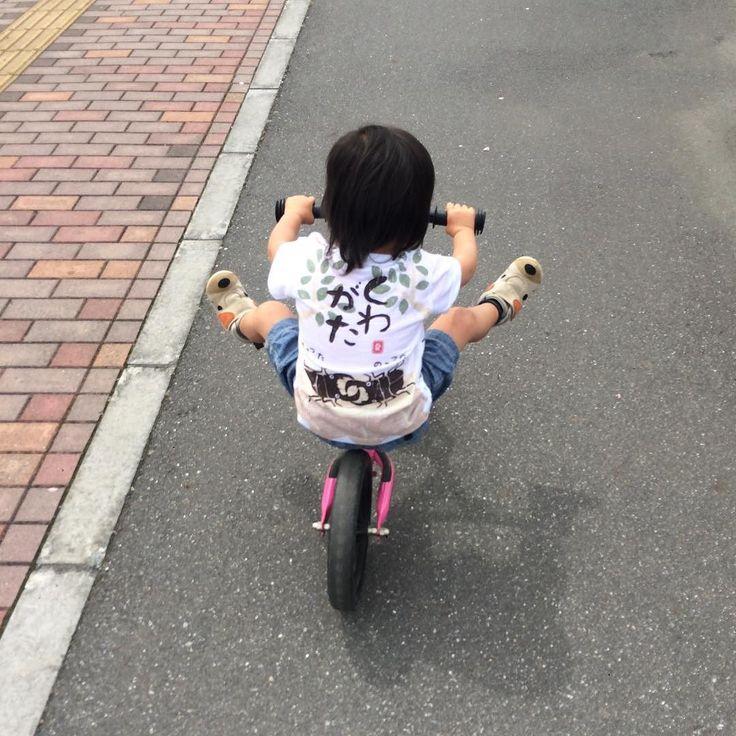ストライダー 乗せて5日で両足あげる技を身につける お姉ちゃんが乗り回してるの見てたからかな 次女は度胸あるし怖いもの知らず 歩くより速くて楽ちんだ 抱っこもしなくてすむし くわがたTシャツはお気に入り #ストライダー #2歳9ヶ月 #くわがた #Tシャツ by satooomi729