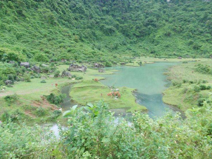 Ke Bang Park, Vietnam.