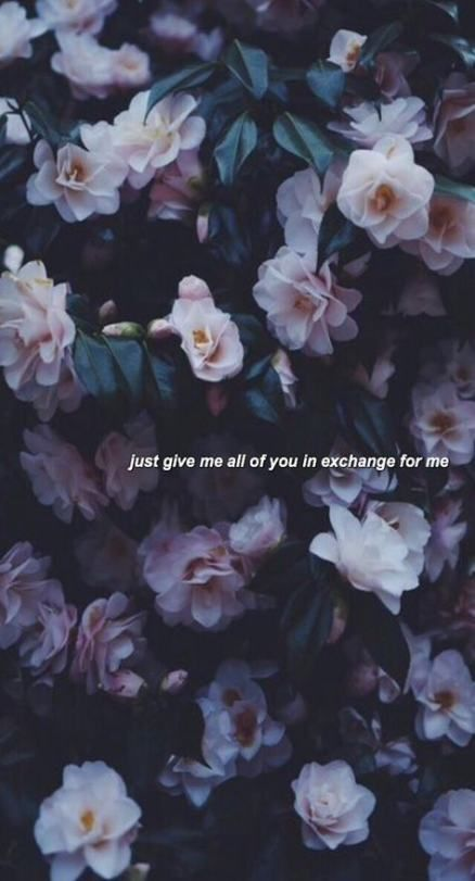 Flowers Background Quotes 24 New Ideas Tumblr Wallpaper Tumblr Backgrounds Beautiful Tumblr Flower wallpaper with quotes