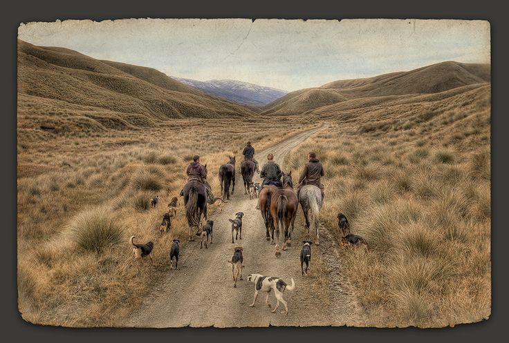 The Long Road Home - photography by Nathan Secker. Available from www.imagevault.co.nz