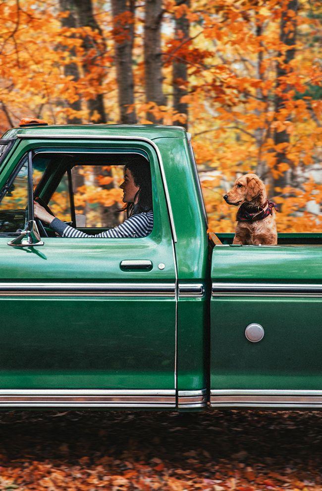 Autumnmobile
