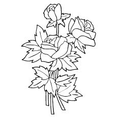 top 25 free printable beautiful rose coloring pages for kids  rose coloring pages embroidery