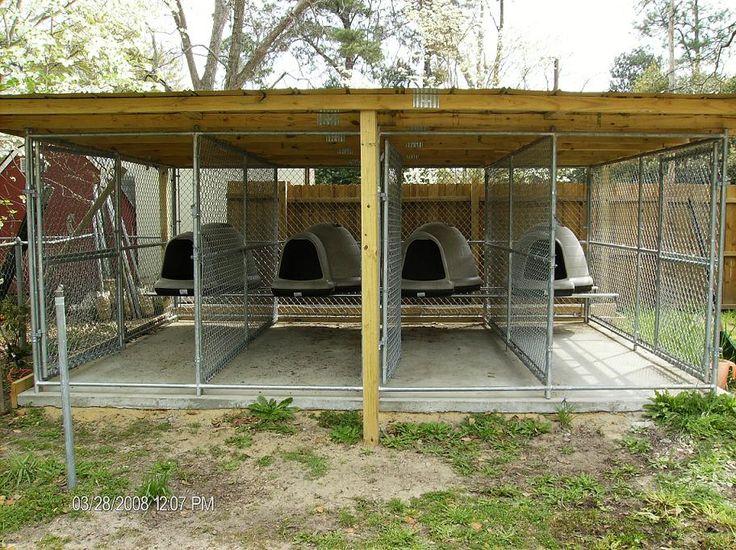 dog enclosures outdoor - Google Search | Diy dog kennel