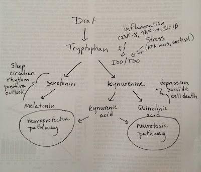 Evolutionary Psychiatry