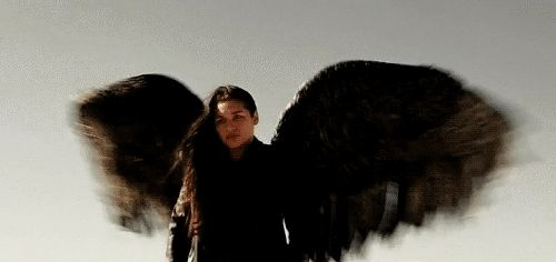 #Dominion I love watching Noma take off. Kim is just so graceful!