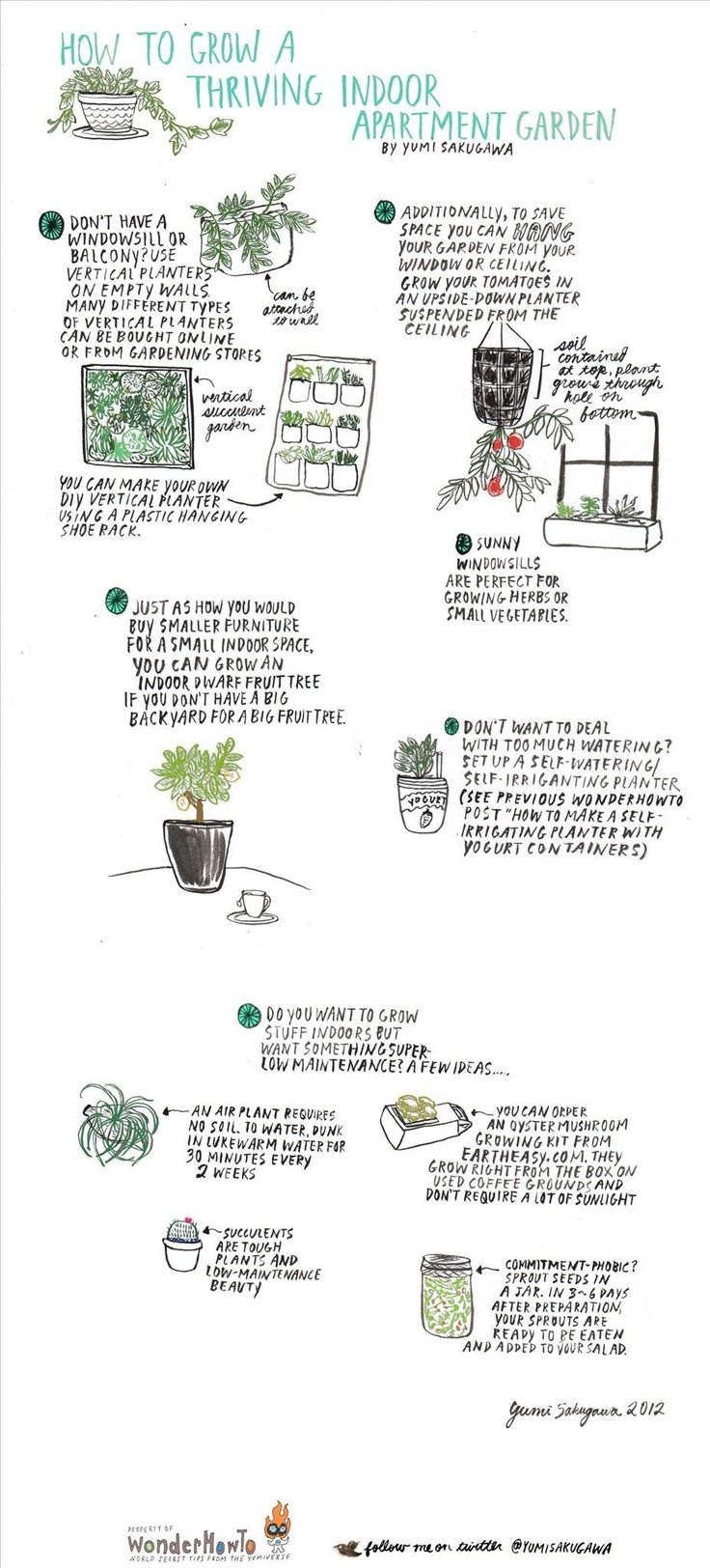 Doing this: How to Grow a Thriving Indoor Apartment Garden