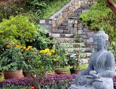 På dette retreat, under verdens tag, vil du opleve det uspolerede Nepal på egen krop. Du bliver indlogeret på et unikt og skønt sted i Nationalparken, blot en times kørsel fra hovedstaden Kathmandu.