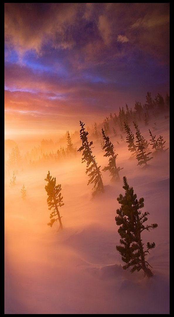 ['Puesta del sol' - Parque Nacional de las Montañas Rocosas, COLORADO - photo vía: Scott Hotaling - 500px.com] » COLORADO - Rocky Mountain National Park - sunset photo via: Scott Hotaling -- 500px.com