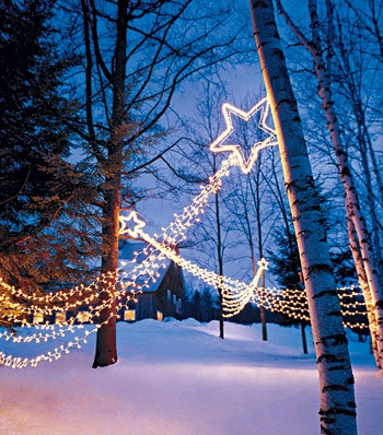 Shooting stars. What a great idea.Shooting Stars, Stars Lights, Shoots Stars, Holiday Lights, Christmas Lights, Martha Stewart, Christmas Decor, Outdoor Lights, Outdoor Christmas