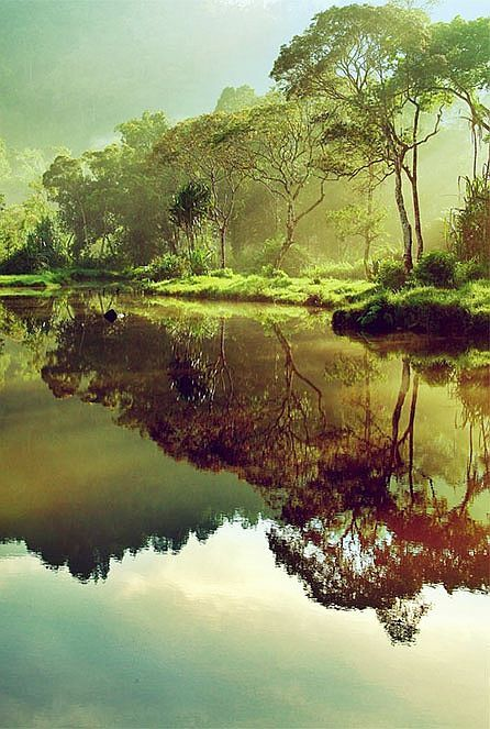 Morning at Situ Gunung II by - Juhe Photography