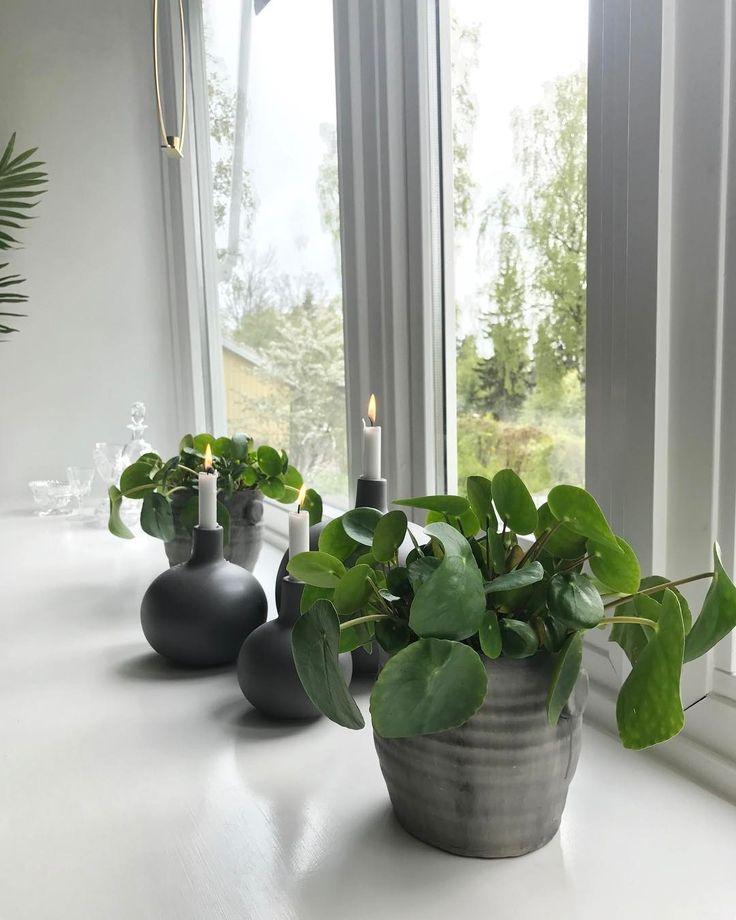 """Gefällt 636 Mal, 3 Kommentare - Interior & Fashion Inspiration (@inspirasjonsguidennorge) auf Instagram: """"I vinduskarmen 🌿 Huset vårt er fra 50-tallet og vinduene skråner litt utover. På den måten blir…"""""""