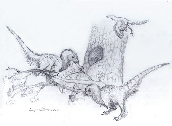 33 best images about Dinosaur Sketches on Pinterest ...