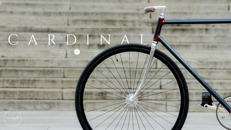 Cardinal by vocalcycle http://www.vocalcycle.com