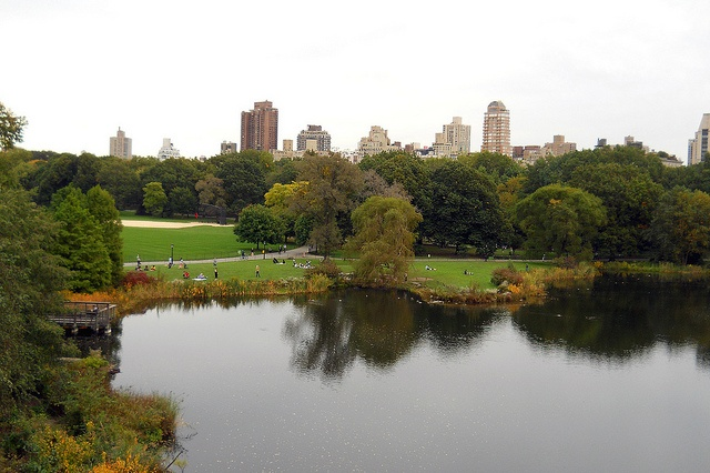 Central Park - nyny  (view from Belvedere Castle)