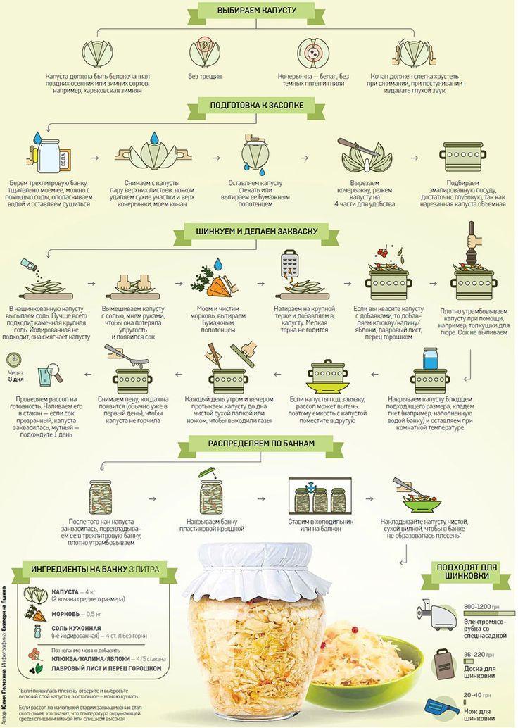 Инфографика. Рецепт закваски капусты в банке: выбираем капусту, подготовка к засолке, шинкуем и делаем закваску, распределяем по банкам