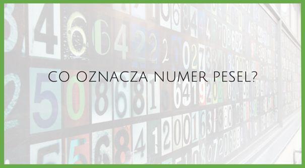 Poznaj formułę, dzięki której dotrzesz do informacji zawartych w numerze PESEL. Możesz być zaskoczony!  #formuła #tipsandtricks #excel #peselrozpracowany #cognity #szkolenia