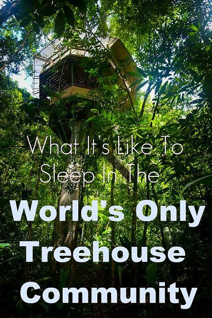 What It's Like To Sleep In The World's Only Tree house Community >> Finca Bellavista is the world's first planned, modern, sustainable tree house community and it's in Costa Rica. This place looks amazing! #PinUpLive