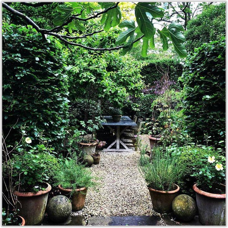 The Bamboo Garden: Best Gardening Tips And Ideas – Bamboo Garden