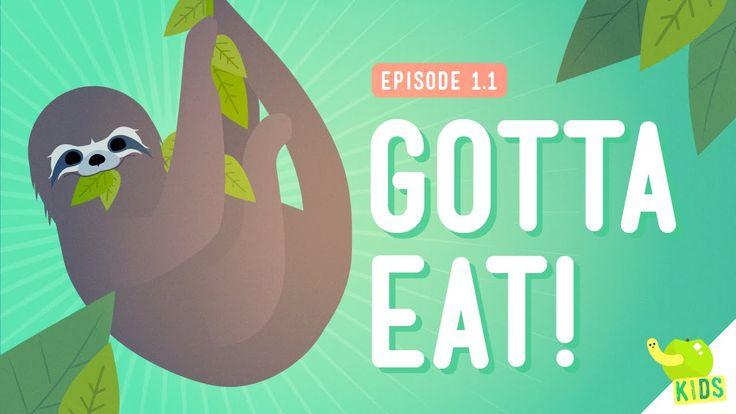 Week 2......Gotta Eat! - Crash Course Kids 1.1