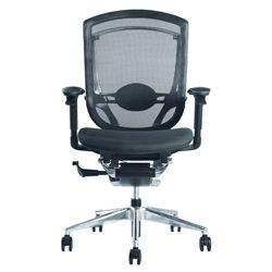 Ergonomic Ergo Fit Highly Adjustable Mesh Office Chair