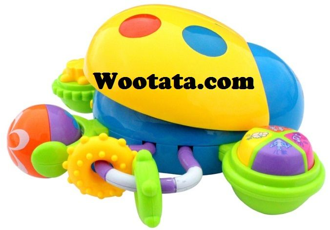 Multifunction Puzzle Ladybug Permainan Untuk Bayi 18 Bulan