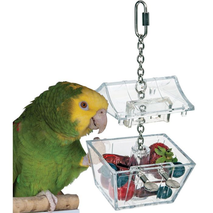 3 4 In Octagon Bird Toys : Best caitec images on pinterest bird cage cages