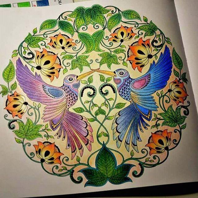 #coloring #johannabasford #johannabasfordsecretgarden #crayons #kinpolycolor #omalovanky