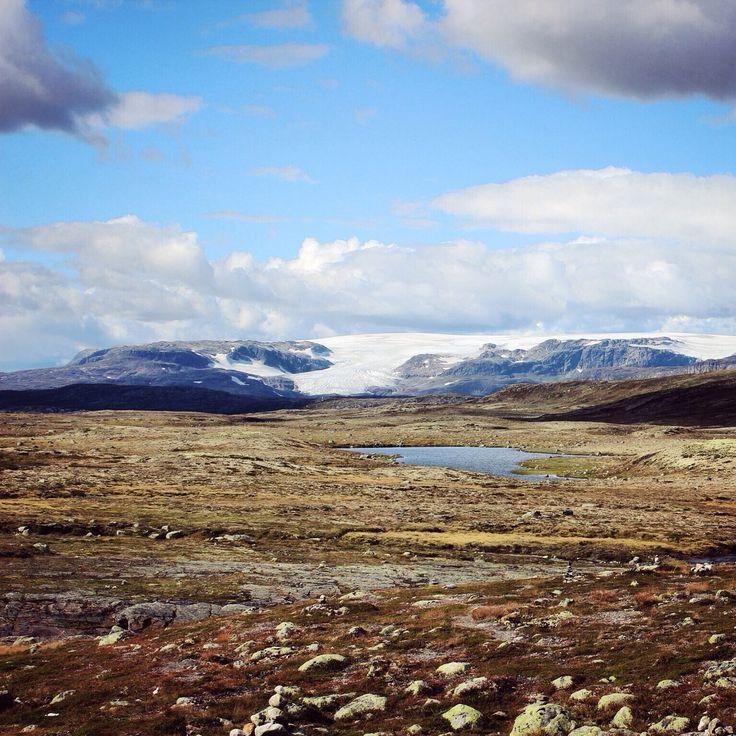#hardangervidda #hardangerjøkulen #norway #nature
