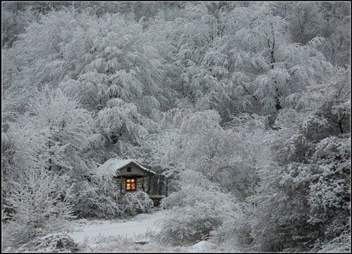 ♡: White Houses, Wood, Little Cabins, Winter Cabins, Winter Wonderland, Landscape Photography, Cottages, Fairies Tales