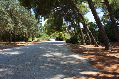 Park in Kifissia, right accross my house where I grew up.  When I am there I feel like I am young again...