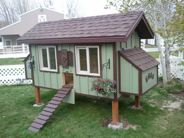 Clean coops blog info on starting your own chicken coop Make your own hen house