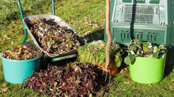 Какие удобрения вносить осенью – виды и дозировка | Дела огородные (Огород.ru)