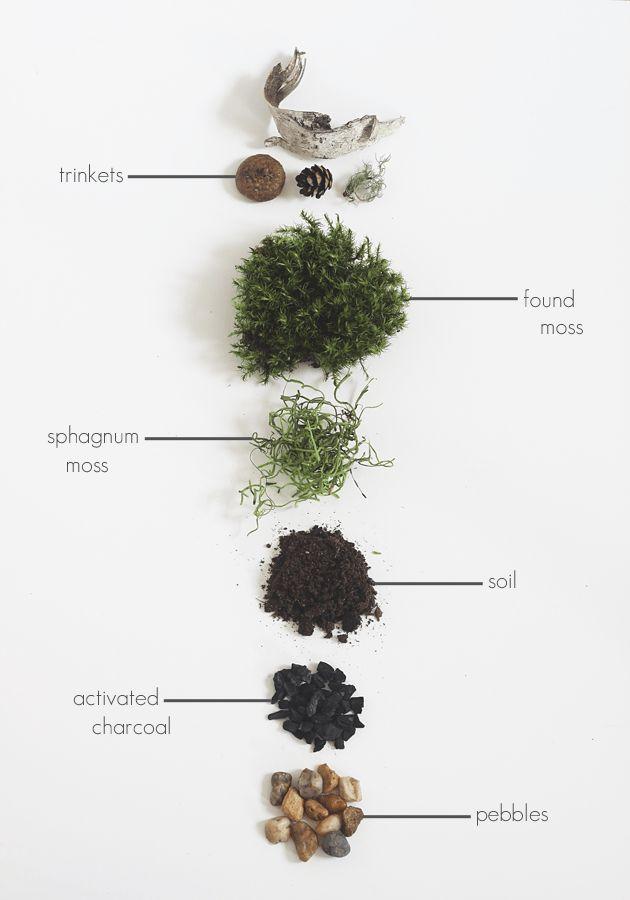 DIY Found Moss Terrarium by Idle Hands Awake