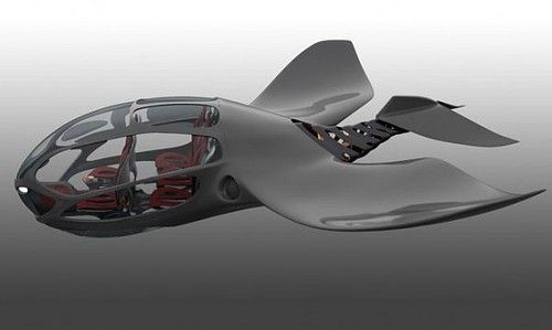 Bionic Submarine  - Bionics is the study and use of nature to inspire design or to duplicate nature.