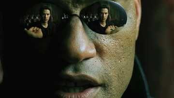 The Matrix Official Clip - Blue Pill or Red Pill - 1999   Fandango MOVIECLIPS