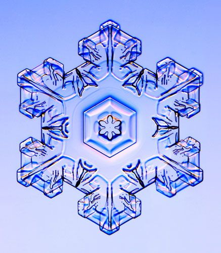 Stellar Plate Snowflake - photograph of a real snowflake